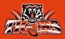 tigers2017a (2)